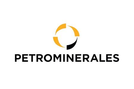 PETROMINERALES